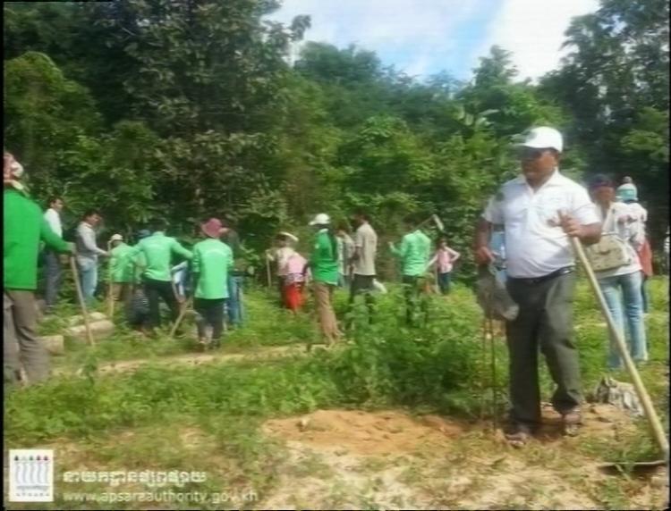 Tree Plant 01 08 16 3 copy