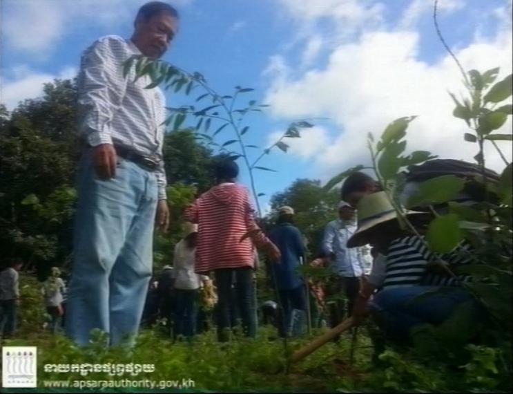 Tree Plant 01 08 16 7 copy